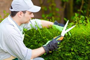 Оказание юридической помощи садоводам