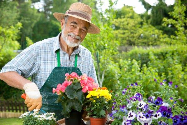юридическая консультация по садоводству