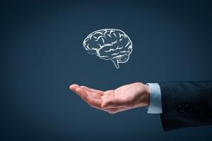 Как нсаледуется интеллектуальная собственность