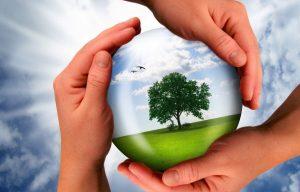 Негативное влияние на окружающую среду