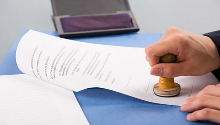 Сроки получения новых документов
